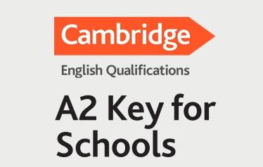 a2 key fs